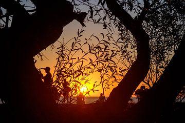 Zonsondergang in Colonia del Sacramento, Uruguay van Geert Smet