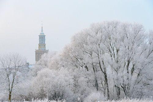 efrorene Bäume mit dem Nieuwe Toren (neuer Aufsatz) in Kampen