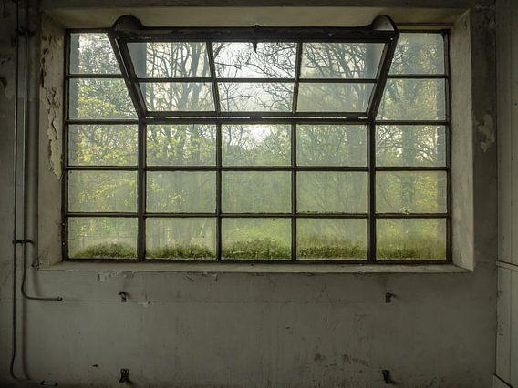 Großes Fenster