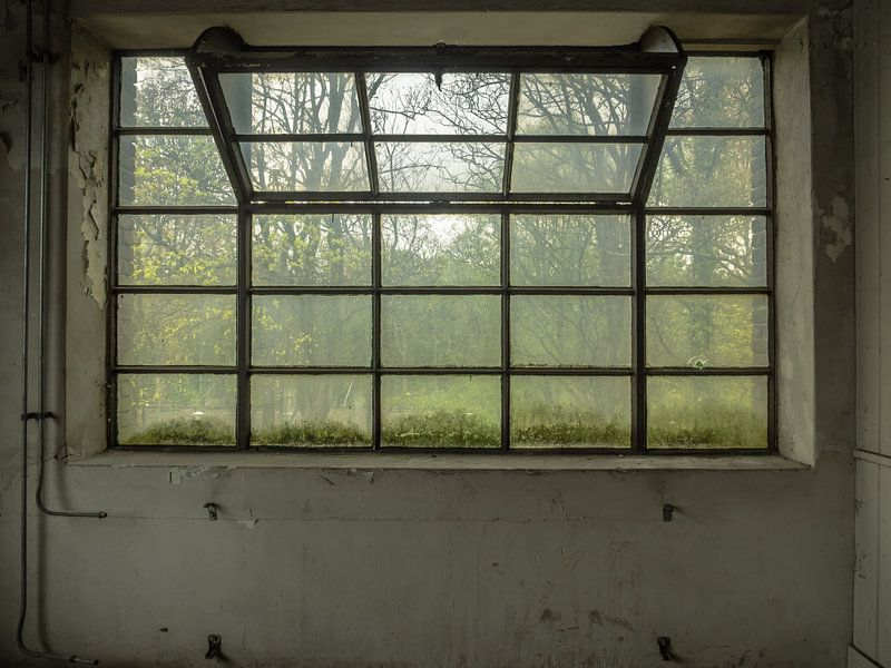 Großes Fenster von Martijn Tilroe