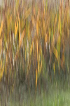 Vier Jahreszeiten: Herbst von Gert van Lagen