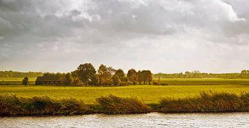 Muiden Amsterdam Die Niederlande traditionelle niederländische ländliche Landschaft mit Kühen, Schaf von John Quendag