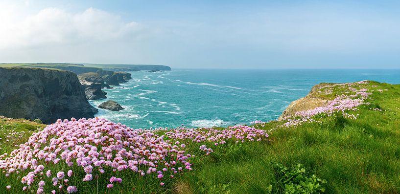Cornwall-kust van Silvio Schoisswohl