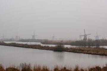 Kinderdijk Windmolens in de mist van