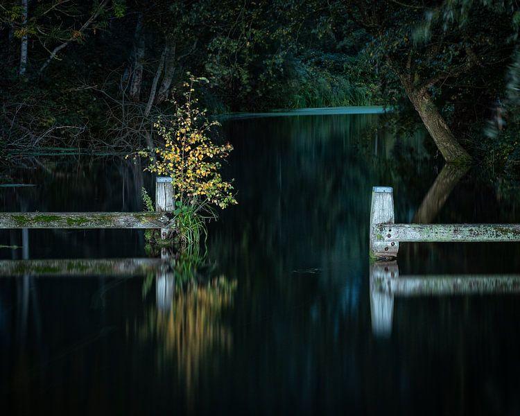 Het donkere pad van het Hoornse Diep van Ron Buist