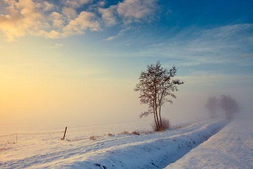 Winterlandschap Nederland van