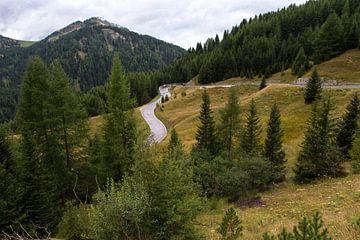 Herfst in de bergen sur Wim Slootweg