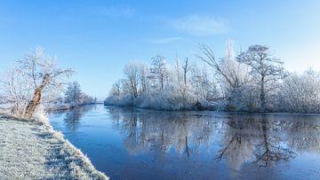 Winter Nienoordsche polder  Leek; de waterkant met rijp van R Smallenbroek