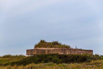 Atlantic Wall van didier de borle