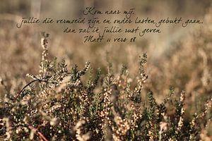 Bijbeltekst Mattheüs 11 vers 28 nbv van Wilma Meurs