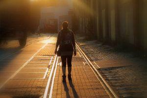 Wandelen in de avondzon