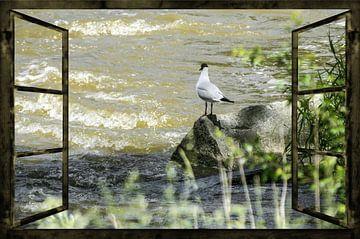 Raam uitzicht - Wild Waters van Christine Nöhmeier