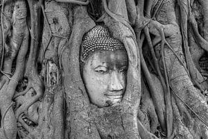 ~Boeddha~ van Conny  van Kordelaar