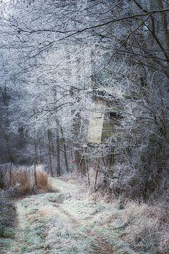 Landschaft im Frost von Tobias Luxberg