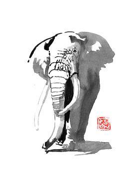 elephant 03 sur philippe imbert