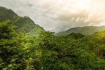 Nepal von René Holtslag