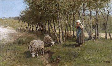Dekkersduin, Anton Mauve sur