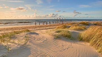 Der Nordseestrand von Petten von Jenco van Zalk