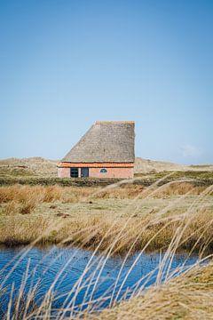 Schapenboet in de zon in het Texelse wadden landschap | Nederlandse fine art natuurfotografie van Evelien Lodewijks