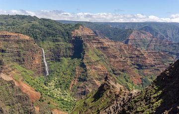 Uitzicht over Waimea Canyon op Kauai van Reis Genie