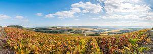 Herfst in de Champagne-Ardennen von Arjen Tjallema