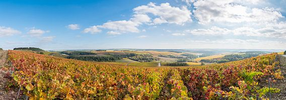 Herfst in de Champagne-Ardennen