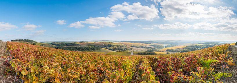 Herfst in de Champagne-Ardennen van Arjen Tjallema