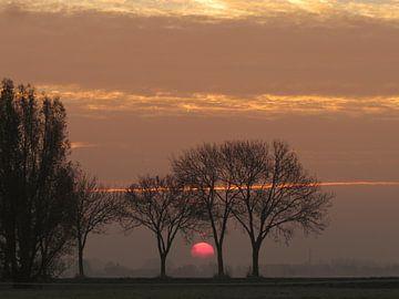 Dutch sunset van Cindy Photo