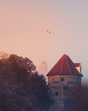 Zwolse Peperbus in de mist van Björn De Vries