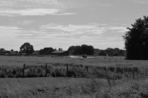 Hollands Landschap in Zwart/Wit