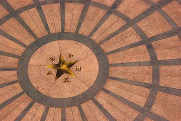 Lone star Texas Capitol Austin, TX, USA van