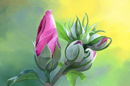Schilderij van een Hibiscus Bloem