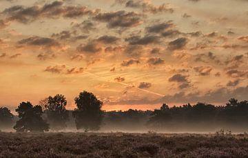 Morning has broken I van Hans Koster