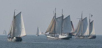 Bruine Vloot van Ed Vroom