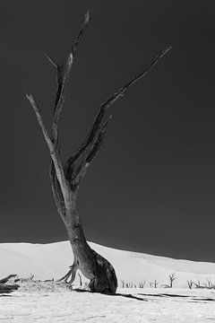 Sossusvlei Namibië (8) Zwart Wit van Adelheid Smitt