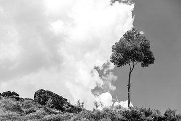 Wolken-Puffer von Insolitus Fotografie