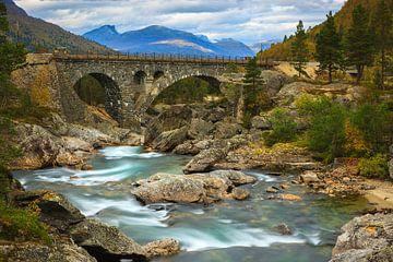 Stuguflåt-brug, Lesja, Oppland, Noorwegen van Henk Meijer Photography