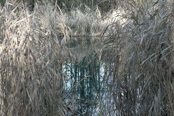Landschap 20 van Miriam Duda