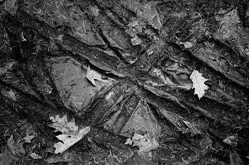 Bandensporen en blaadjes in de modder van