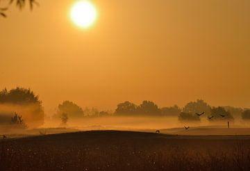 zonsopgang in Nederland Twente von Petra De Jonge