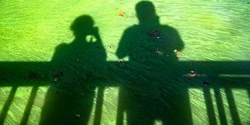 grüne schatten von Stefan Havadi-Nagy