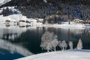 Davoser See von Peter van Dam