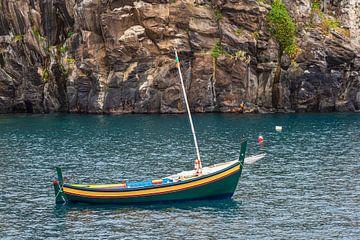 Fishing boat in Camara de Lobos on the island Madeira, Portugal van Rico Ködder