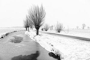 Verschneite Polderlandschaft im Alblasserwaard
