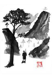 reis naar de berg van philippe imbert