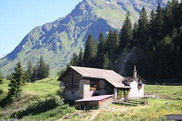 Zwitserland van Lieke Roeven