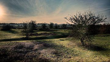 Sonnenaufgang Meinerswijk von Eddy Westdijk