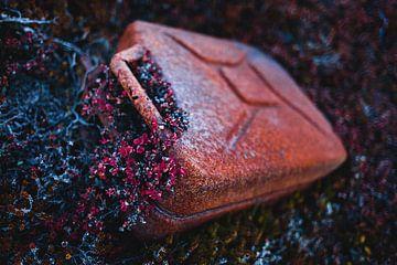 Verroeste jerrycan vergroeid met rode bloemen in Groenland van Martijn Smeets