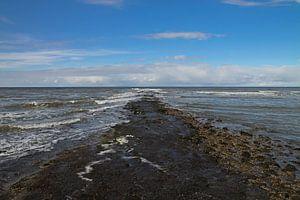 Prachtig uitzicht over de Noordzee vanaf Texel. Stunning views over the North Sea from Texel.