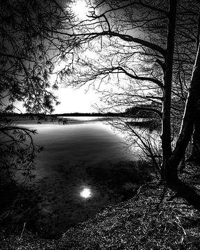 Abendsonne von Peter van Nugteren